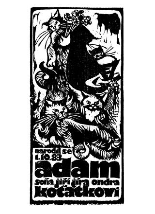 Narodil se Adam Koťátko
