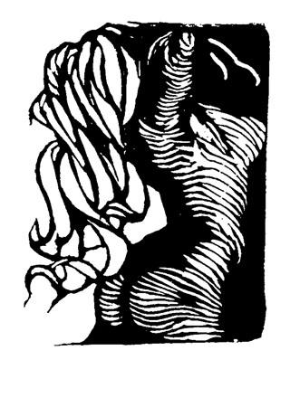Buková ženská